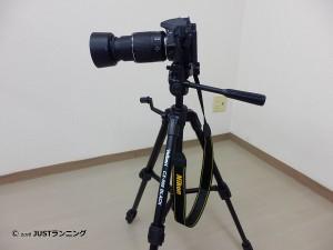 P4270077